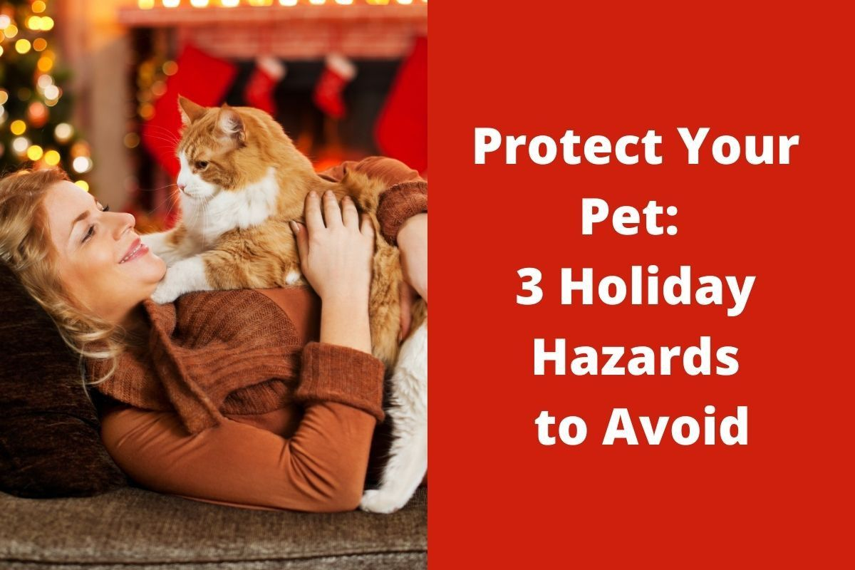 Protect Your Pet: 3 Holiday Hazards to Avoid