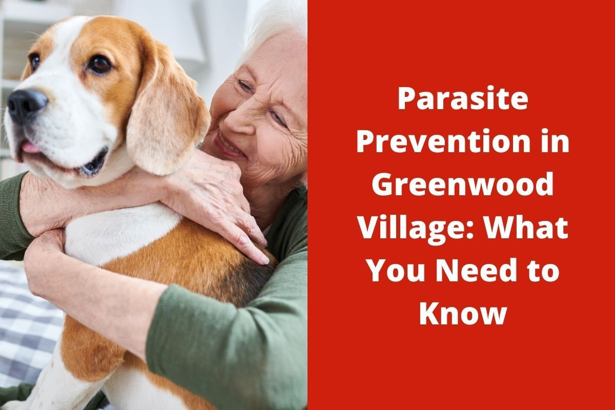 Parasite Prevention in Greenwood Village: What You Need to Know
